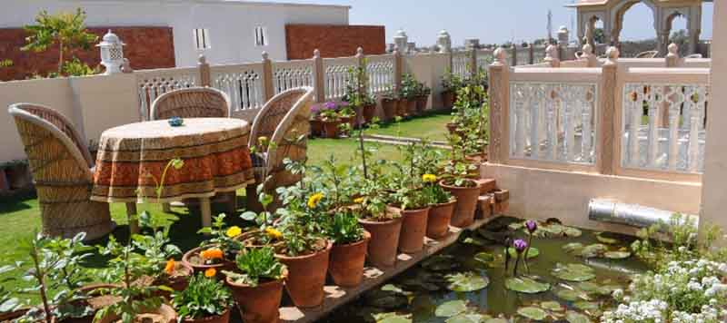 Om Niwas Roof Top Garden 2 - Lotus Pond